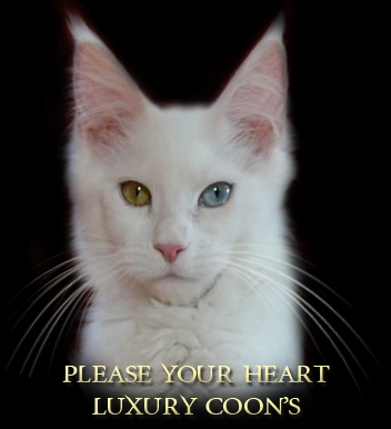 please-your-heart